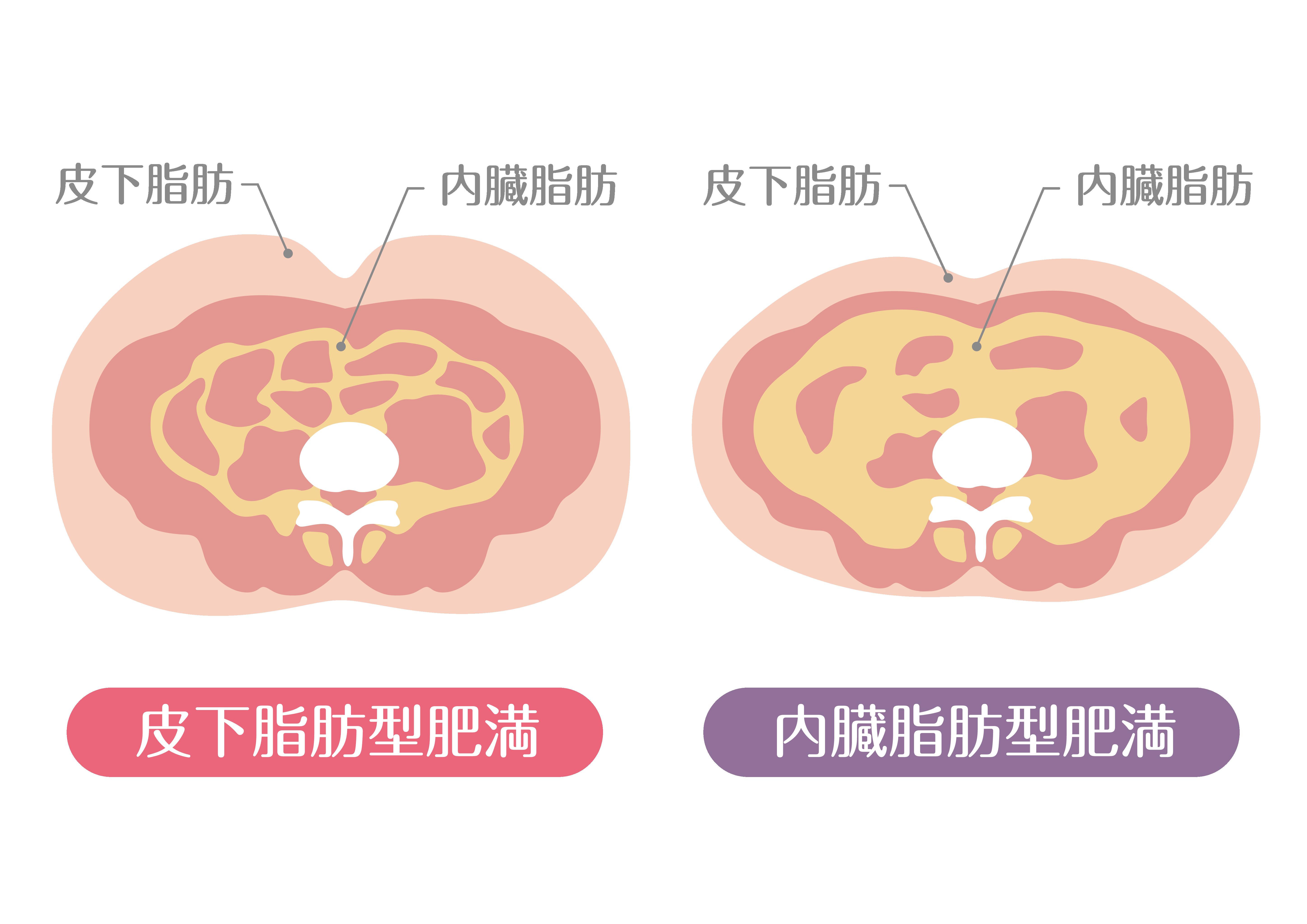 京都のダイエット特化型パーソナルジム 若草 トレーナー